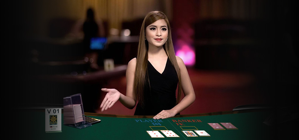 Meet the gaming requirements of the players with the best collection of casino games